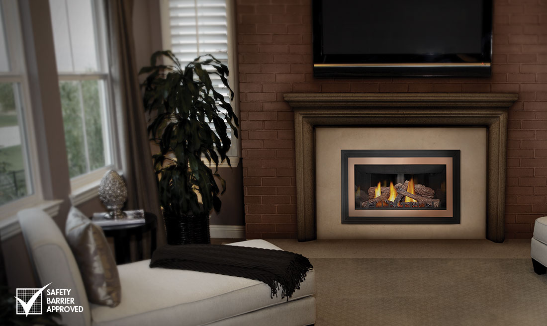 gdizc napoleon fireplaces - Napoleon Inspiration ZC Gas Fireplace Insert GDIZC