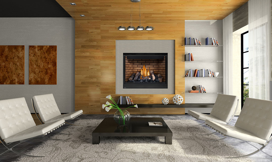 Napoleon High Definition 46 Gas Fireplace | HD46