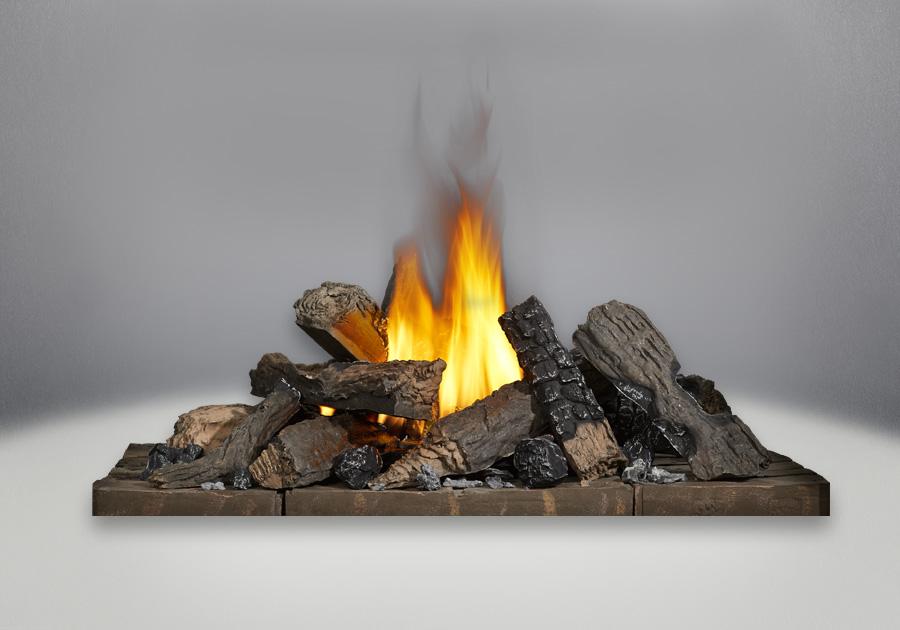 Gas Fireplace gas fireplace log sets : Napoleon Ascent Multi-View Gas Fireplace | BHD4