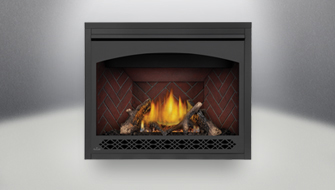 Direct Vent Gas Fireplace Inserts Napoleon Fireplaces